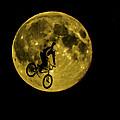 Bmx Moon by Dawn OConnor