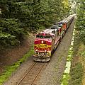 Bnsf Train 789 D by John Brueske