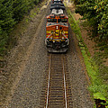 Bnsf Train 789 F by John Brueske