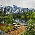 Board Walk- Lake- Fir Trees And Mount Baker by Tom Janca