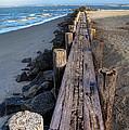 Boardwalk - Charleston Sc by Drew Castelhano