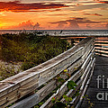 Boardwalk Sunrise Amelia Island Florida by Dawna Moore Photography
