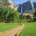 Boardwalk To Yosemite Falls  by Lynn Bauer