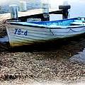 Boat 78-4 by Ian  Ramsay