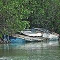 Boat Abandoned In The Mangroves Long Island Bahamas by Genevieve Diamond