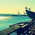 Boat At Alki Beach by Kazumi Whitemoon