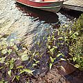 Boat At Dock  by Elena Elisseeva