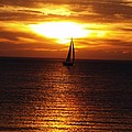Boat At Sunset by Susan Crossman Buscho