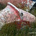 Boat Graveyard Peurto Natales Chile 6 by Bob Christopher