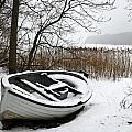Boat On Iced  Lake In Denmark In Winter by Jean Schweitzer