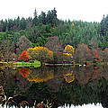 Boathouse On Loch Ard by David Cairns