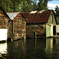 Boathouses On The River by Michelle Calkins