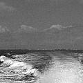 Boating 2 by Anita Lewis