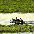 Boating On The Nile River by Christy Lang