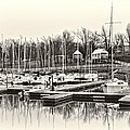 Boats And Cottages In B/w by Greg Jackson