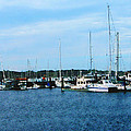 Boats At Newport Ri by Susan Savad