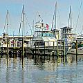 Boats At The Marina by Cathy Jourdan