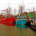 Boats In Branch Marina-nl by Ruth Hager