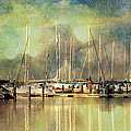 Boats In Harbour by Annie Snel