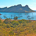Boats In San Carlos Harbor-sonora-mexico by Ruth Hager