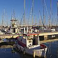 Boats Of Badalona Marina by Kendal Brenneman