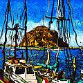 Boats Of Morro Bay by Barbara Snyder