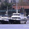 Boats On Lake Union by Judyann Matthews