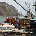 Boats On Morro Bay by Charlotte Stevenson