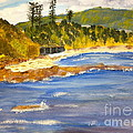 Boatsheds At Sandon Point by Pamela  Meredith