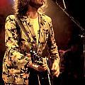 Bob Geldof by Concert Photos
