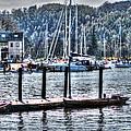 Yachts by Doc Braham