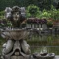 Boboli Fountain by Michael Kirk