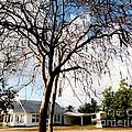 Bodden House 2 by Amar Sheow