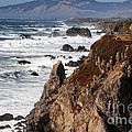 Bodega Bay Color by Bob Phillips