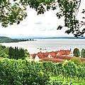 Bodensee by Gordon Elwell