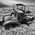 Bodie Classic Black And White by Blake Richards