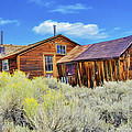 Bodie House And Sage by Doug Holck