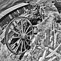 Bodie Wagon Black Annd White by Blake Richards