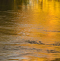 Boise River Autumn Abstract by Vishwanath Bhat