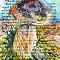 Boletus Edulis Close Up by Beverley Harper Tinsley