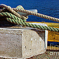 Bollard Closeup - Ropes - Mooring Lines - Wharf by Barbara Griffin