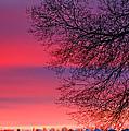 Bolton Sunset by Steve Harrington