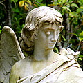 Bonaventure Angels Series - Clipped Wing by Kay Mathews