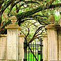Bonaventure Gate Savannah Ga by William Dey