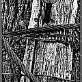 Bondage by Peter J Sucy