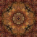Bone Tapestry 2 by Anthony Weinedel