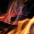 Bonfire by Robin Vargo
