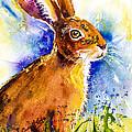 Bonny Bunny by Carrie McKenzie
