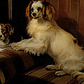 Bony And Var by Sir Edwin Landseer