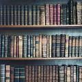Bookshelf by Joana Kruse